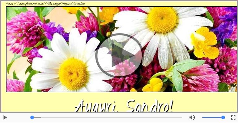 Cartoline musicali di auguri - Tanti Auguri di Buon Compleanno Sandro!